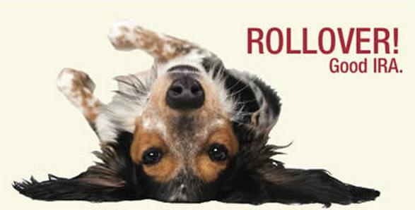 rollover-IRA-puppy